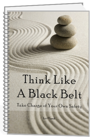 thinklikeablackbelt-book-cover-art