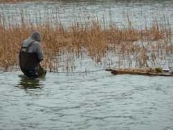 Putting in Our Loon Nesting Platform