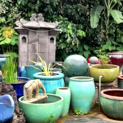 colorful pots at garden ponds nursery