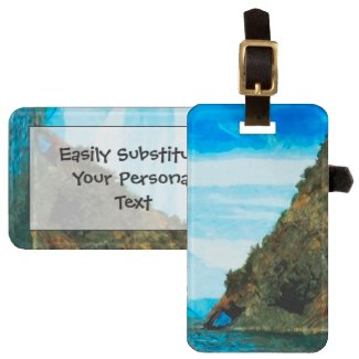 Outside the Bay of Seward Alaska Abstract Bag Tag