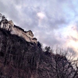 A Mouse and a Lion Led Us to Liechtenstein