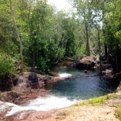 Litchfield National Park: Bush Bashing in the NT