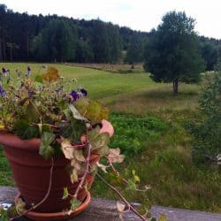 Summer in Dalarna: Simple Swedish Traditions