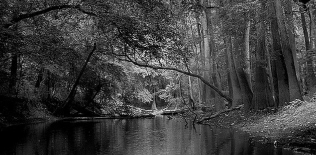 relatively unknown national parks Congaree