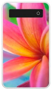 Yellow Orange Deep Pink Tropical Plumeria Flower Power Bank