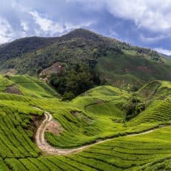 6 Great Places to Visit in Malaysia Besides Kuala Lumpur