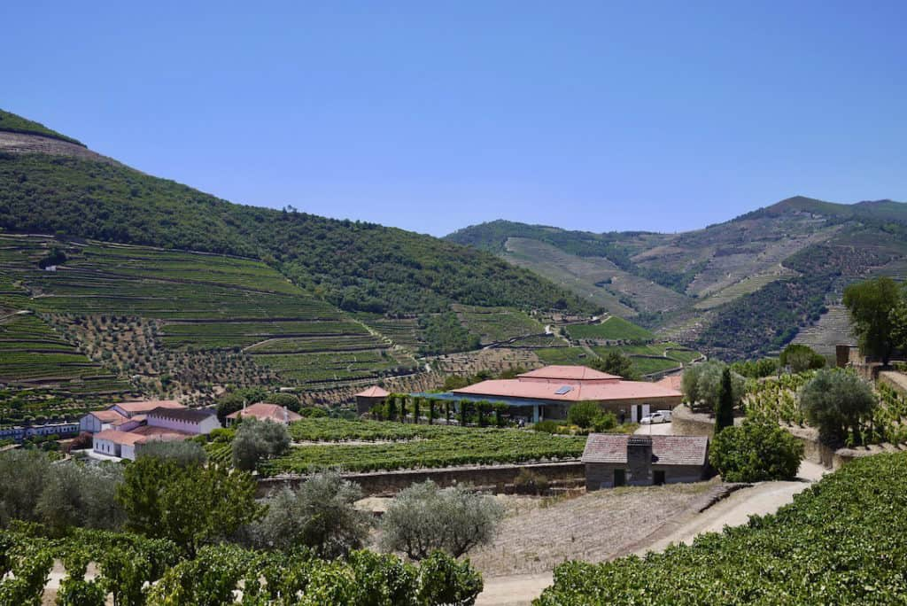 best day trips from porto - douro valley