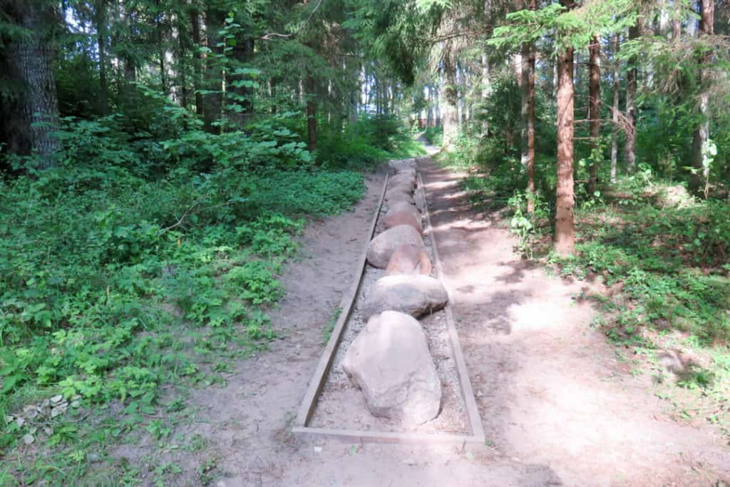 what to see in Riga - The Barefoot Path in Kemeri National Park, Latvia national park