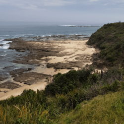 Central Coast Australia: Terrigal Beach Area Things to See and Do