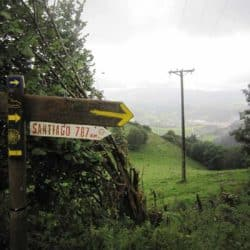Things You Will Learn About Yourself While Walking the Camino de Santiago