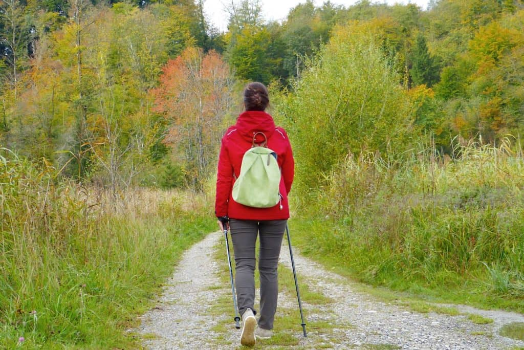 woman hiker with backpack on forest trail
